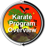 Karate Overview