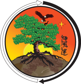 Shinpu-Ren Family Karate Historical Lineage